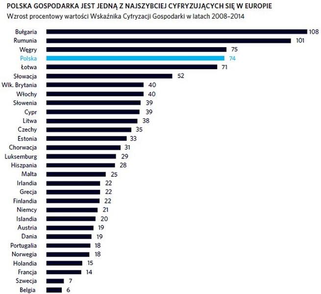 raport cyfryzacji polska